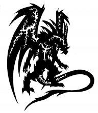 NinjaDragon48